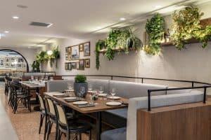Organica Cafe interior Inner West Sydney